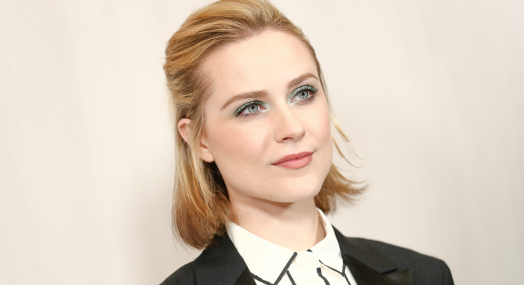 Evan Rachel Wood Plastic Surgery Nose Job Boob Job Botox Lips